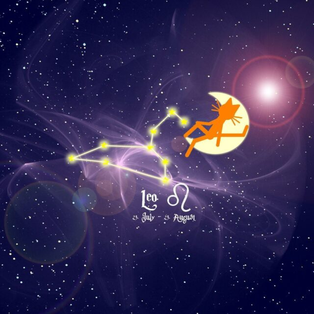 Individual courage and authenticity! Leo Season begins! Full Moon in Aquarius! General weekly horoscope (July 19th-25th)