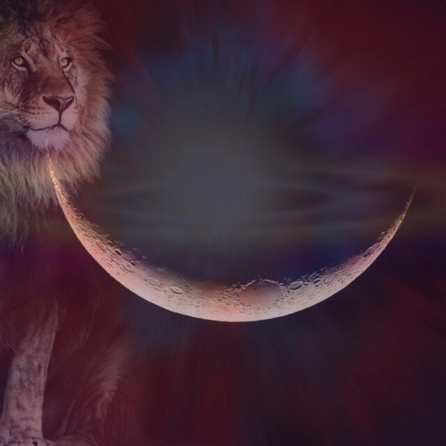The Lion's Gate opens! Sirius rises! New Moon in Leo! General weekly horoscope (August 2nd-8th)