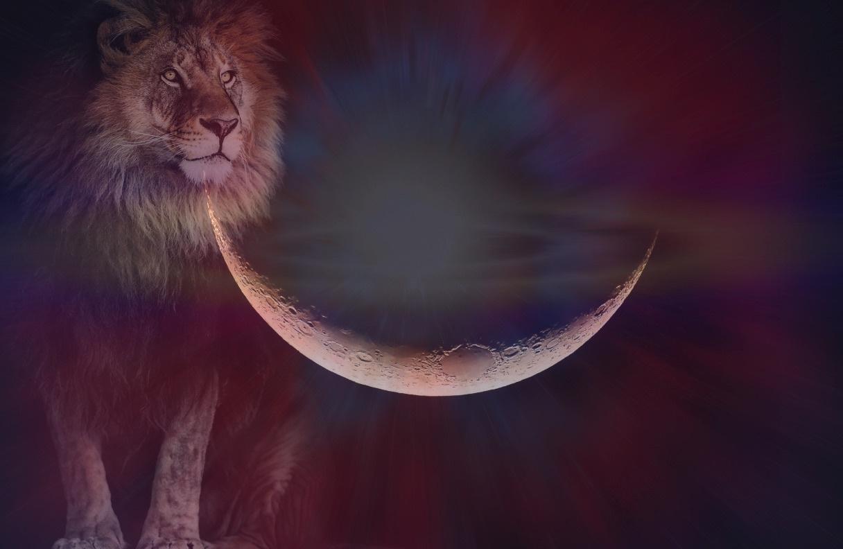 https://nightfallastrology.com/wp-content/uploads/2021/08/New-Moon-In-Leo.jpeg